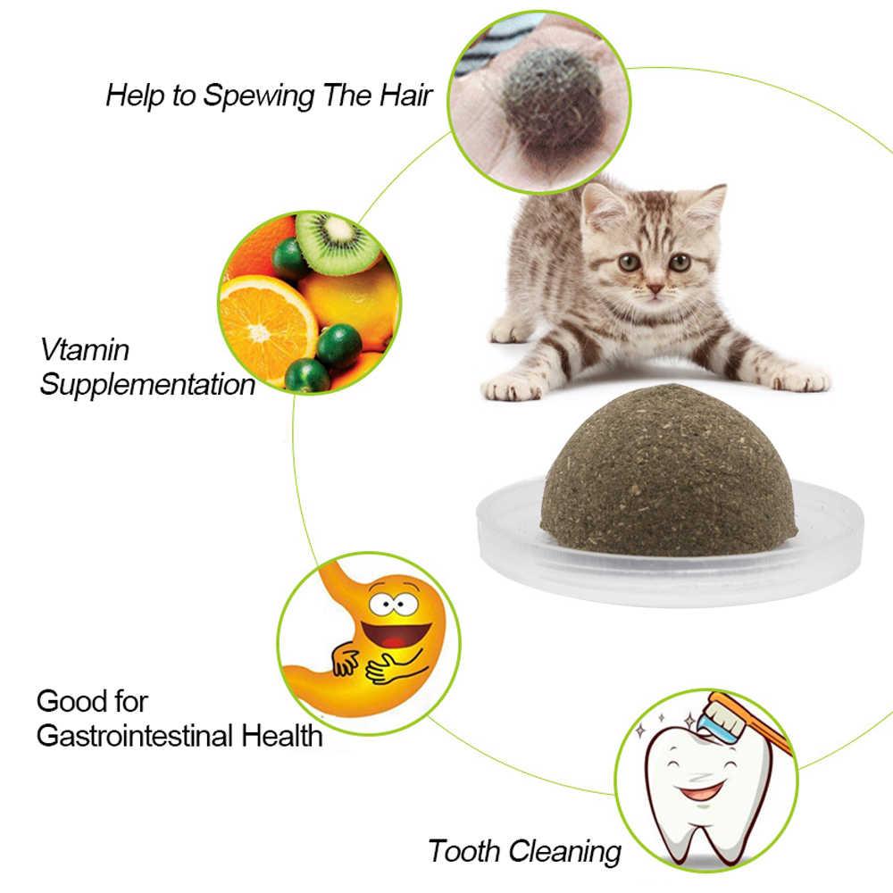 자연 Catnip 고양이 장난감 고양이를위한 미친 건강한 Catmint 장난감 새끼 고양이 Kedi 청소 치아 놀이 공 고양이 용품 애완 동물 제품