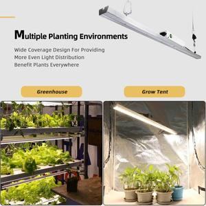 Image 5 - Quantum LED Coltiva La Luce Bordo di Samsung LM301B Spettro Completo 300W 1200W 1800W Pianta Che Cresce Lampada Per Interni piante Serra Tenda