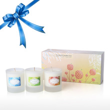 3PC Tooarts Scented Candles Natural Soy Wax Exquisite Gift Box Party Wedding Home Column Fragrant Candle Decorative