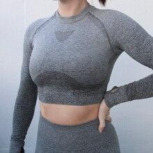 Nepoagym Vrouwen Ombre Cropped Naadloze Lange Mouwen Top Crop Top Vrouwen Workout Shirts Voor Vrouwen Sport Tops Gym Vrouwen