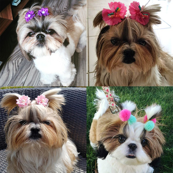 Dogs Hair Rubber Bands 6