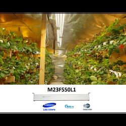 M23FS50L1 светодиодный светильник для теплиц 50W Фито лампы полный спектр для выращивания растений и рассады