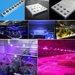 Image 5 - High Power LED COB Chip 1W 3W 5W Warm Cool White Red Blue Green Yellow Full Spectrum 660nm 440nm For Grow Light Aquarium Lamps