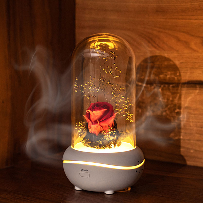 Preserved Rose Lamp Christmas LED Rose Lamps Aromatherapy Mechine Aroma Essential Oil Diffuser Unique Present For Birthday Gift