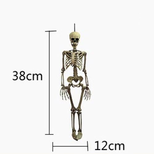 Squelette conception de crâne grande taille | Accessoire dhalloween, modèle danatomie corps main, décor