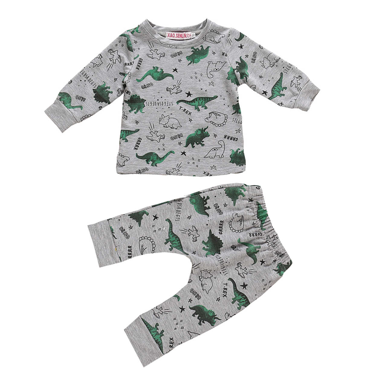 Baby Dinosaur Clothes 2 Piece Set Toddler Infant Boy Girl Gray Long Sleeve Autumn Cartoon Outfits