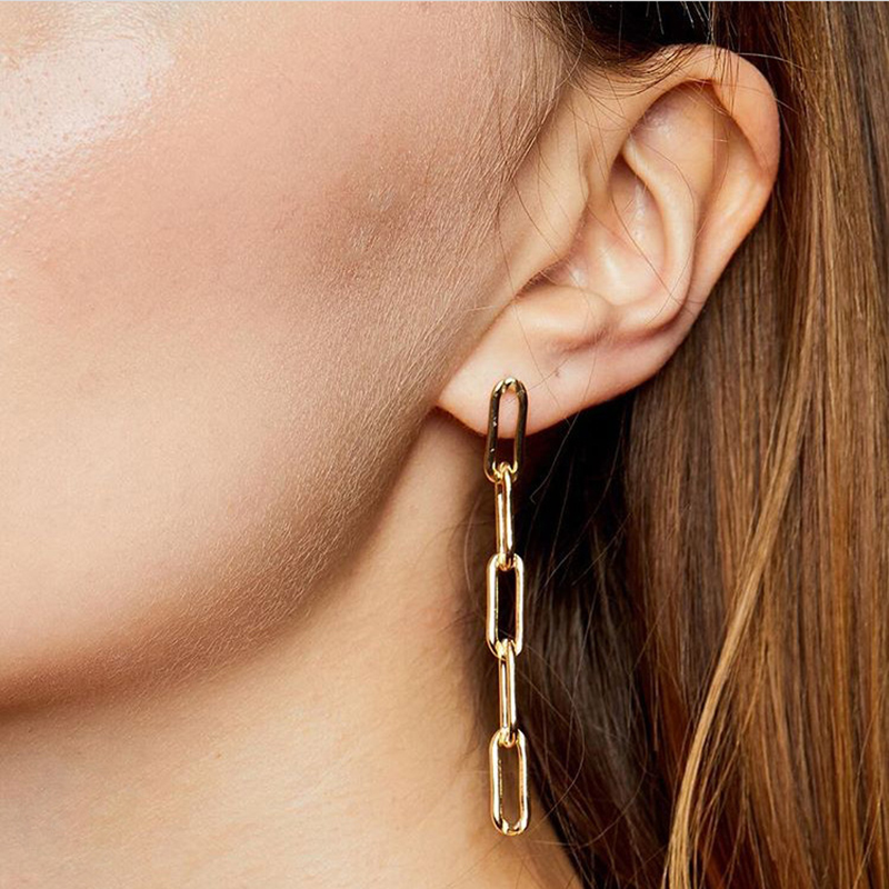 GWACC In 2019, the new brand design oval chain earrings ladies simple earrings.