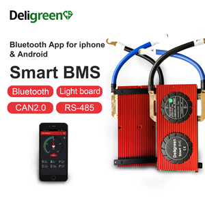 Deligreen Smart BMS 17S LiFePO