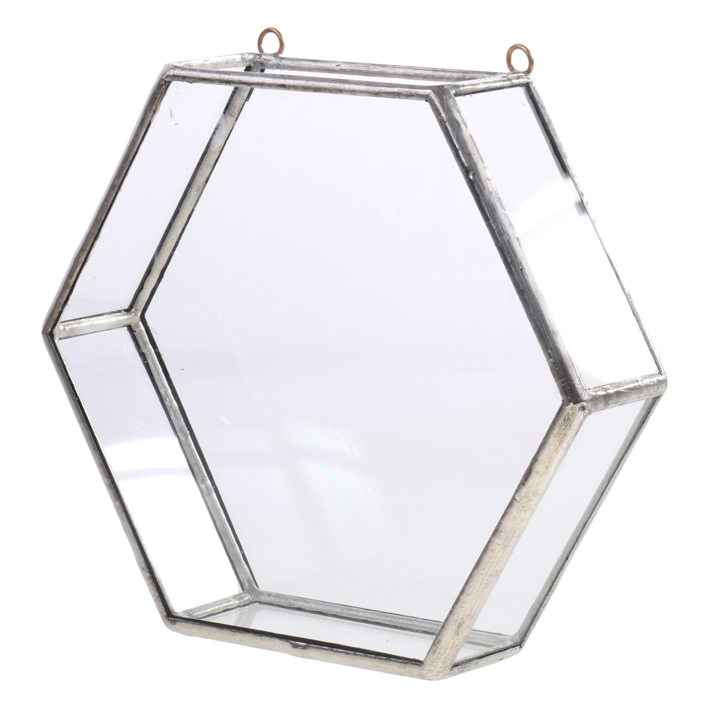 Modern Artistic Hanging Glass Hexagon Geometric Terrarium Indoor Plant Container