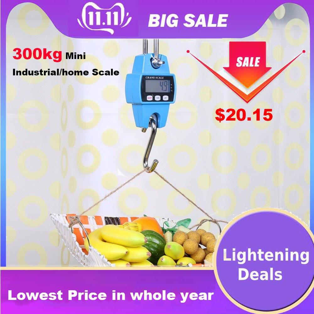 300kg x 50g Mini Balance de grue industrielle LCD numérique suspendu Balance de grue Durable crochet électronique lourd Balance de poids