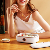 220V Electric Lunch Box Three dimensional Heating Intelligent Rice Cooker Portable Multicooker Heat Preservation Cooker 300W