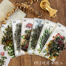 40pcs pack Refreshing Plants Flower Sticker Decoration Stickers Diary Scrapbooking Label Sticker Stationery cheap Gimue Paper 01720 3 YEARS OLD 170mm * 75mm
