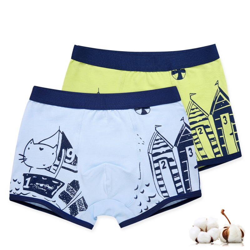 2pcs Boys Panties Kids Casual Baby Cotton Underwears Children's Cartoon Printing Underpants Kids Boxer 3-14Y