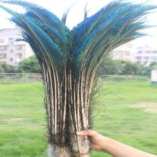 Feather-Sword Party-Decoration Craft-Making Symmetric Natural Wholesale Hat And 10pcs