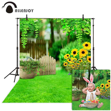 Fotografia allenjoy tło wiosna wielkanoc drewniany żywopłot słonecznik zielona trawa tło photo studio photophone photocall rekwizyty