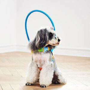 Image 1 - Blind Dogs Pet Safe Harness Anti collision Ring Pets Weak Color Guide Circle Animal Protection Collar Rings