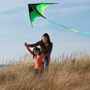 Однолинейный треугольный воздушный змей для всей семьи, забавная игра, Классическая, для занятий спортом на открытом воздухе, Портативный К...