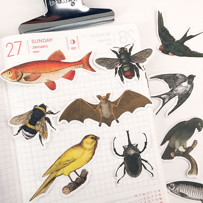 14PCS Flying Insect Fish Vintage Stickers Crafts And Scrapbooking Stickers Book Student Label Decorative Sticker DIY Stationery