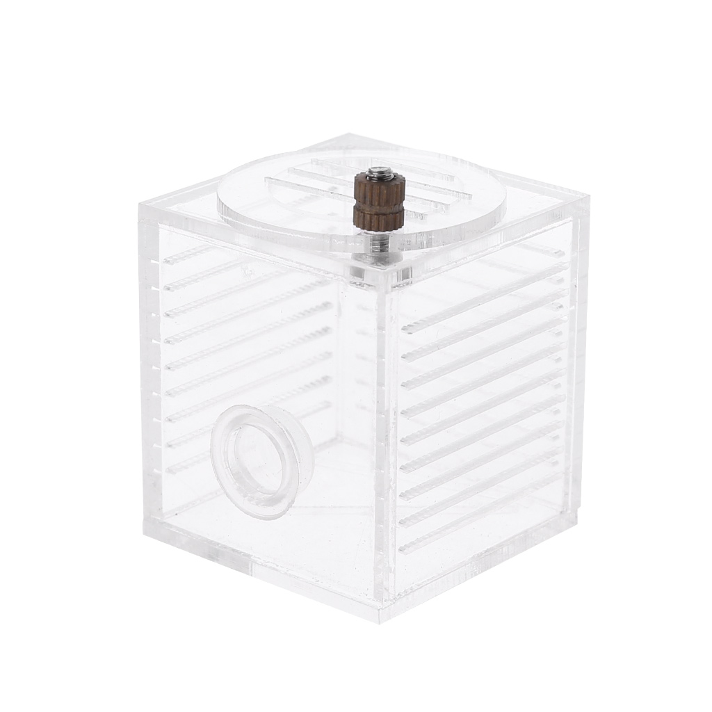 Acrylic Ant Feeder Ant Farm Feed Playing Area Ant Insect Nest House clocks and colours nomad