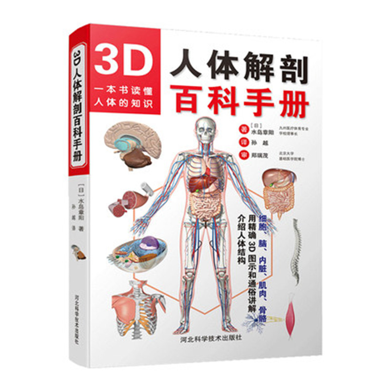 3D Human Anatomy Color Picture Human Anatomy Introductory Book Physical Map Anatomy Medical Book