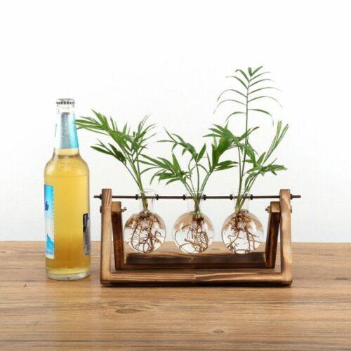 Creative terrarium hydroponic plant transparent vase wooden frame vase decoratio glass Table plant Bonsai decoration vase - Цвет: C