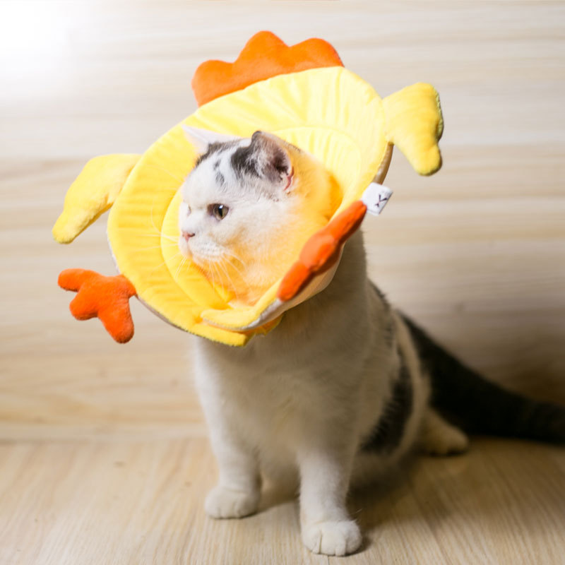 Elizabeth Ring Cat Dog Collar Bandana Anti Grasping Bite Anti-Lick Head Band Cat Shame Circle Chickens Practical Cute