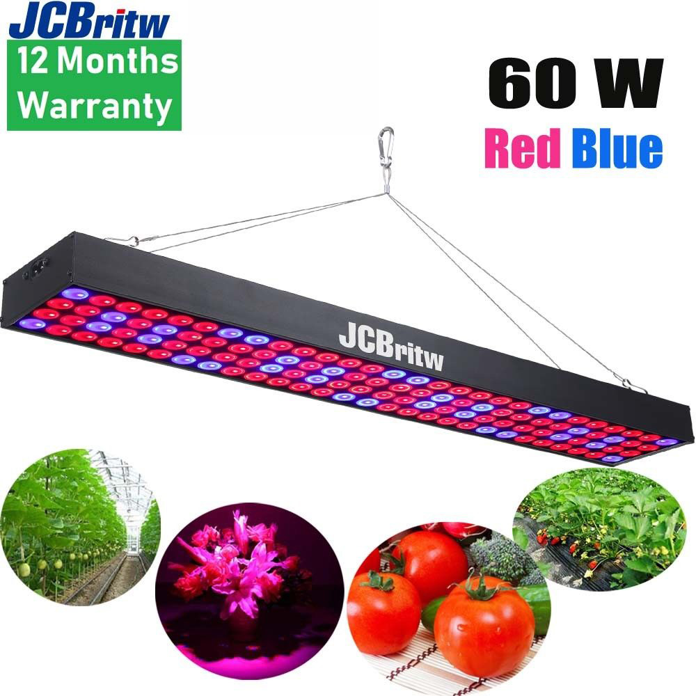 JCBritw LED Grow Light For Indoor Plants Red Blue Spectrum Plant Lights Growing Lamps Long Panel 60W Hydroponic Lightning Fixtur