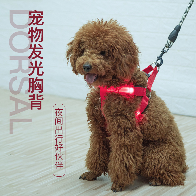 Pet LED Shining Dog Chest Strap Shining Hand Holding Rope Flash Suspender Strap Large And Medium Small Dogs Chest And Back