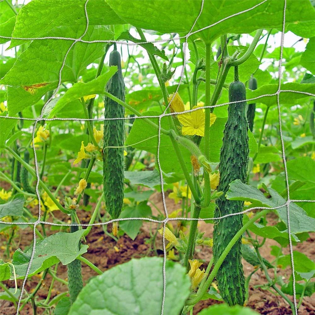 Garden Plants Climbing Net Polyester Rattan Net Cucumber Vine Flower Netting Support Net Grow Holder Garden Trellis Netting