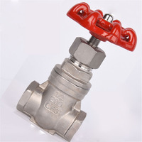 Sluice Valve SS304 Stainless Steel Female Thread Pipe Gate Valve DN65/DN80/DN100