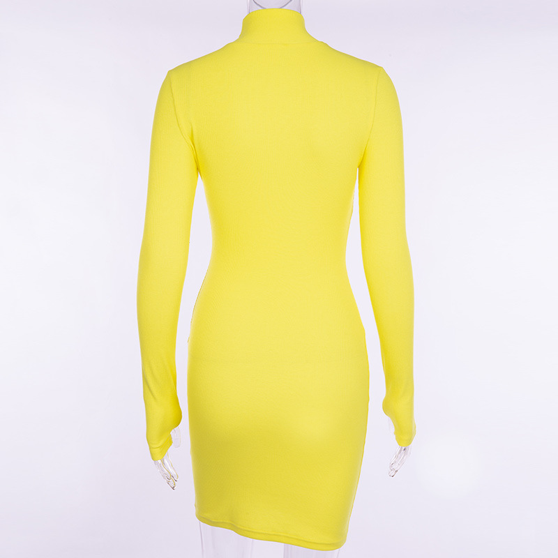 Cryptographic Ribbed turtleneck long sleeve winter dress women 19 fashion vestidos trend color slim sexy bodycon dresses 12