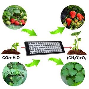 Image 5 - Lámpara LED de espectro completo para cultivo de plantas, luz LED para cultivo de plantas, flores, plantas de semillero, 2835 Chip rojo + azul + IR + UV