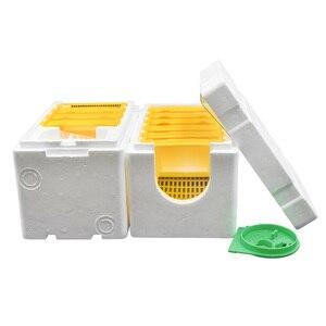 Коробка для инструментов для пчеловодства 2 слоя урожая королева опыление пчеловодства для пчеловодства копуляции королева резерв улей ул...