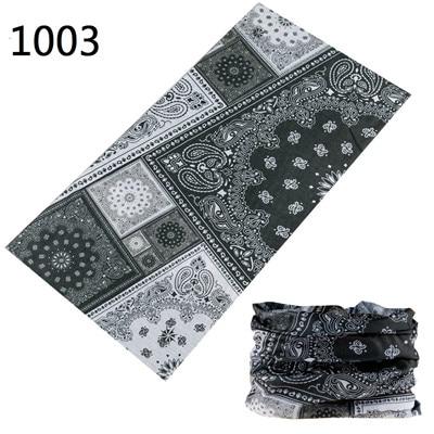 1003 - 副本