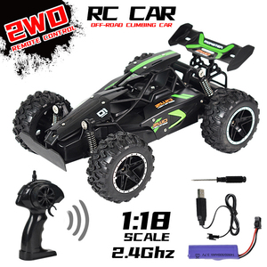2020 NEW RC Car 1:18 Scale 2.4