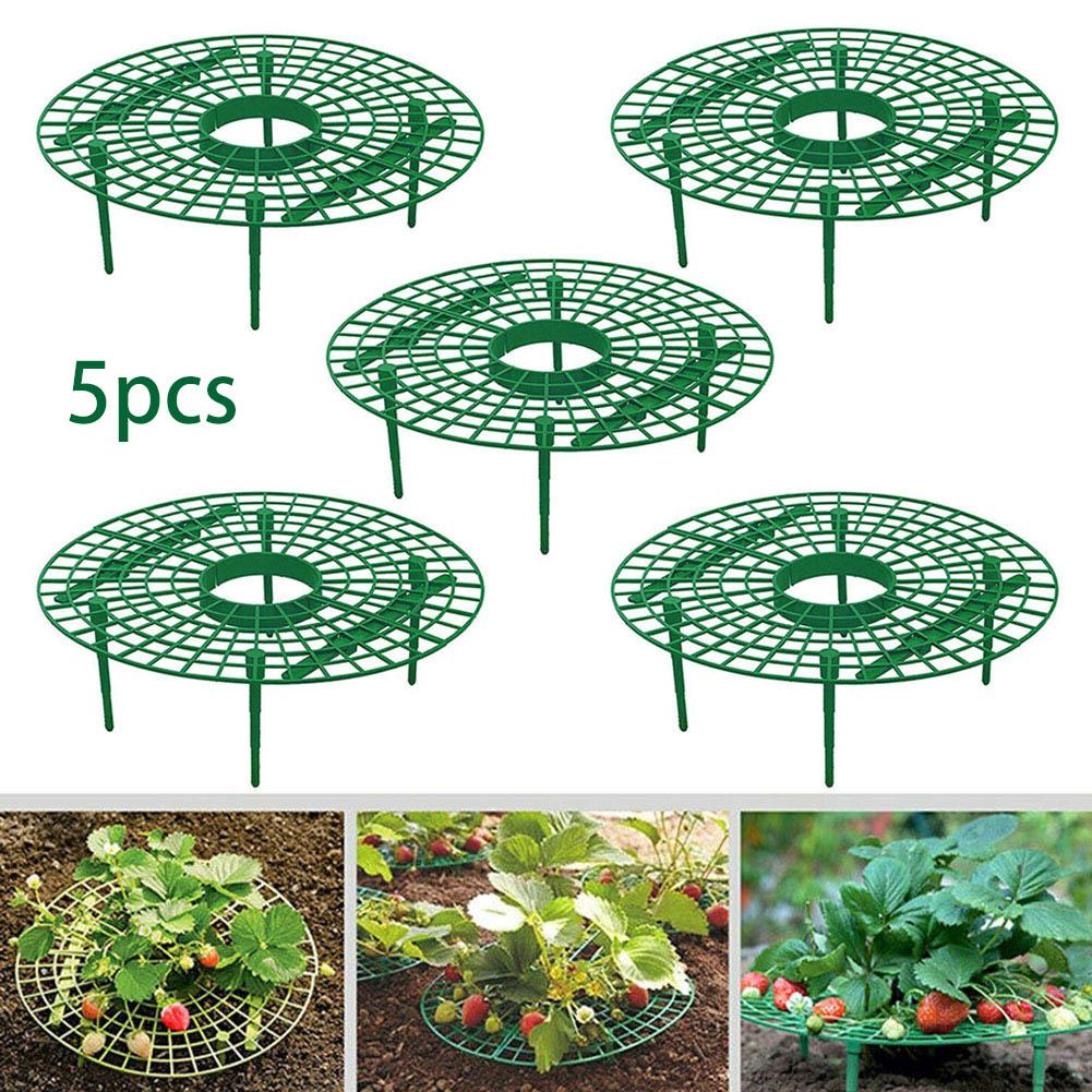 5pcs Plant Plastic Tool Strawberry Growing Circle Support Rack Farming Improve Harvest Frame Lightweight Removable Racks