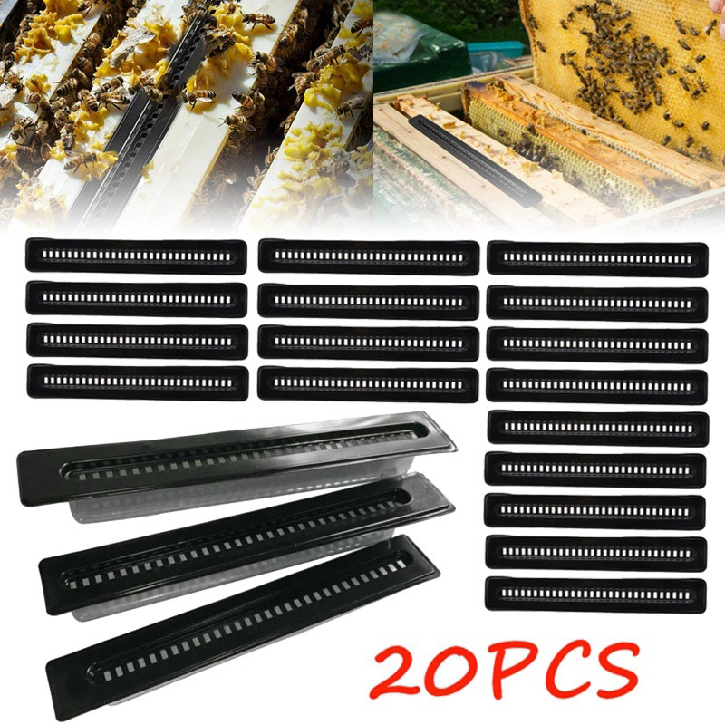 20Pcs Small Bee Hive Beetle Blaster Beetle Trap Beekeeping Tools PAK55