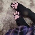 Сапоги до бедра, Чулки с эластичным бортом, обувь с принтом «кошачий коготь» Носки для Для женщин и девочек; Kawaii; Свитшот 3d кошка палец с когт...