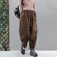 Зимние женские брюки большого размера с подкладкой, Теплые повседневные брюки, новинка, эластичная резинка на талии, свободные женские ретро брюки универсальные