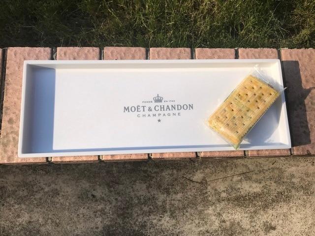 Moet y Chandon bandeja de plástico para el desayuno de estilo nórdico plato para postre de fruta organizador de bandejas para Cocina