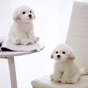 Image 2 - חדש באיכות גבוהה סימולציה מלטזית כלב בפלאש צעצוע רך קריקטורה בעלי החיים כלב ממולא בובת עיצוב הבית תינוק ילד מתנת יום הולדת