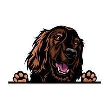 24*15cm adorável cão de estimação corpo do carro janela da porta adesivos e decalques estilo do carro decoração automática acessórios 3d vinil carro adesivos