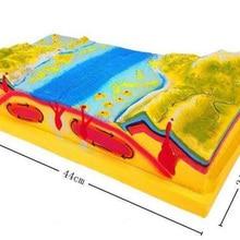 Структура и поверхностная морфологическая модель географии учебно-образовательного оборудования в начальной и средней школе