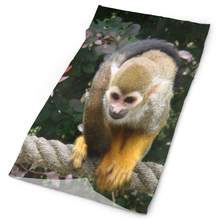 Headband Squirrel Monkey In The Amazon Jungle Outdoor Scarf Mask Neck Gaiter Head Wrap Sweatband Sports Headwear(China)
