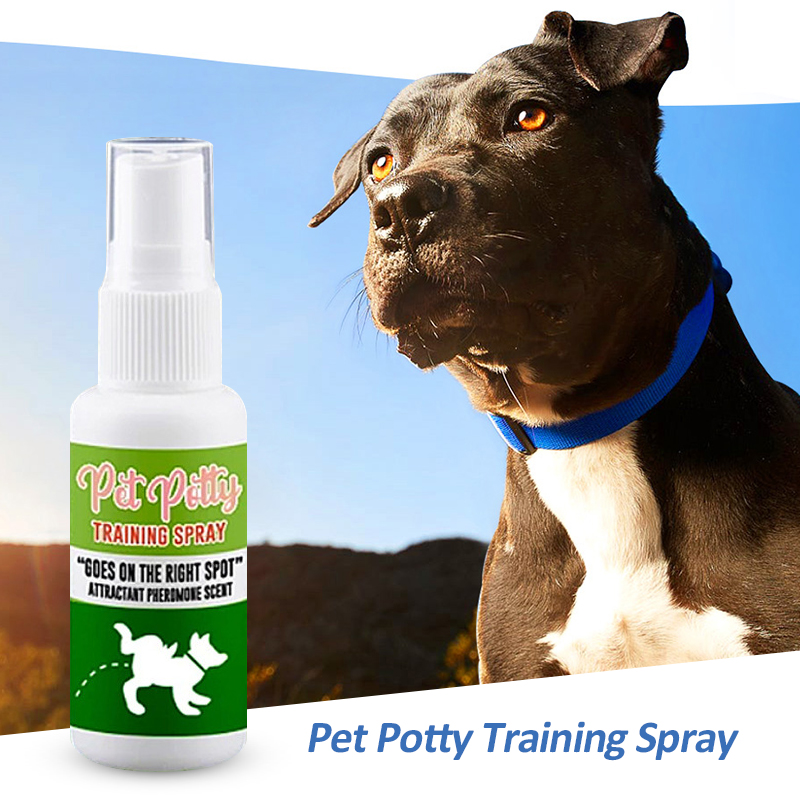 Pet Potty Training Spray Encourages Dogs To Urinate Wherever The Product Sprayed Doggy Pee Training Toilet For Puppy Pet Supplie