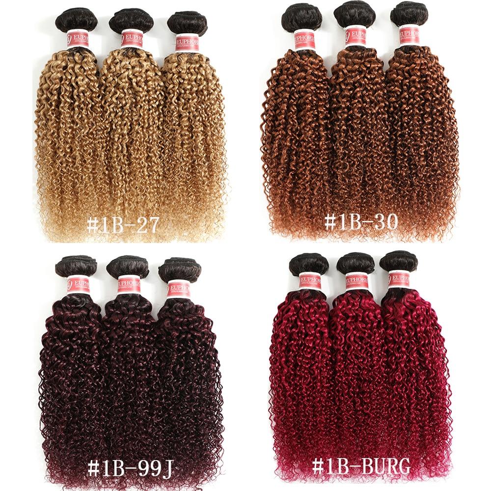 Ombre 27 Kinky Curly Hair 3 Bundles Brazilian Human Hair 1/3/4 Pcs 1B Brwon Red Burg Remy Curly Hair Weaving Bundles EUPHORIA