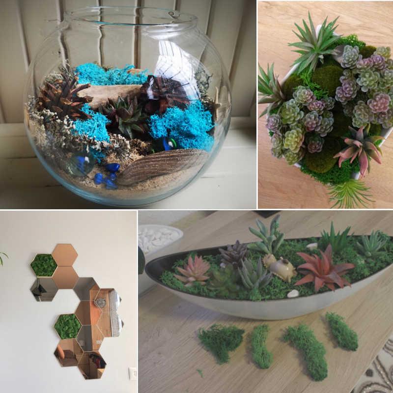 Musgo de vida eterna de plantas artificiales/decoración del hogar de jardín pared DIY material de flores Mini accesorios de micropaisajismo