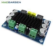 TPA3116 D2 Mono Digital Audio Amplifier Board Class D 100W Amplifiers DC12 26V DIY XH M542 HIFI Amp Module