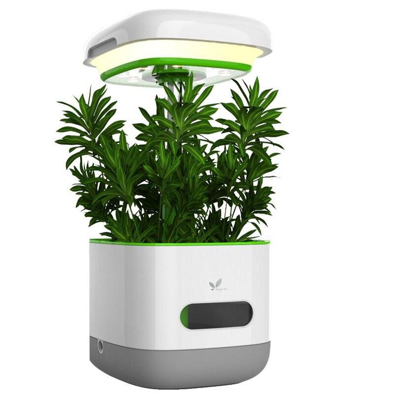 Lampe de croissance de plantes à spectre complet pour graines d'intérieur boîte de plantes à fleurs de légumes culture hydroponique hors sol en pot