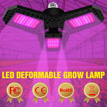 Full Spectrum E27 Led Grow Light Plant Lamp Led Fitolamp 40W 60W 80W Phyto Lamp 220V Hydroponic E26 Indoor Flower Grow Tent Bulb full spectrum 18 30 50w 80w led grow light e27 e26 lamp bulb for plant hydroponic full spectrum